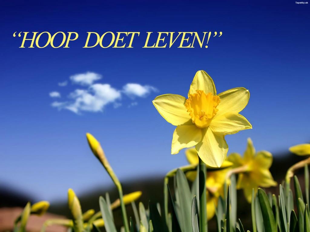 HOOP DOET LEVEN